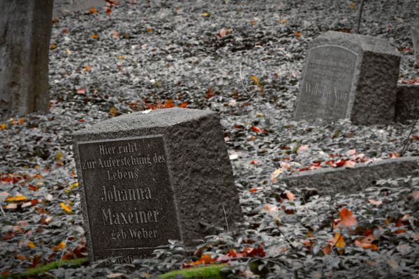 bergmannsfriedhof-015A3CD238-5A03-68C0-6528-D4E20B579DFA.jpg