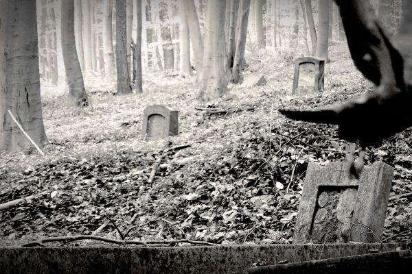 bergmannsfriedhof-04446C43B3-E6B4-73F4-4758-FC0B00730A74.jpg